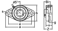 Set Screw Locking Two-Bolt Flange Unit, BFT200 Series-2